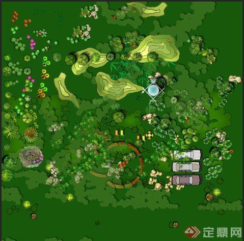 景观植物平面素材ps格式