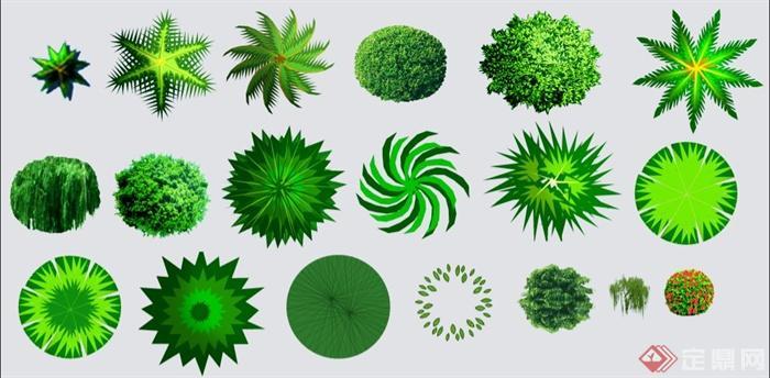 一张景观植物平面素材psd格式图片