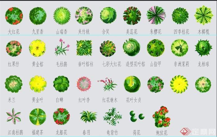 灌木景观植物psd平面素材