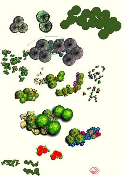 景观植物组团平面ps素材