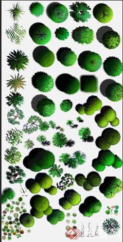 灌木,乔木景观植物ps平面素材