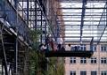 植物墙,垂直植物