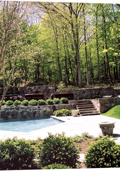 庭院景观,台阶,乔木,花钵,植物