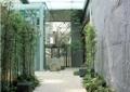 商业环境,园路,地面铺装,灯点,植物