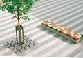 树池,树池盖板,坐凳,地面铺装