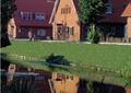 住宅景观,乔木,草坪,驳岸,水景