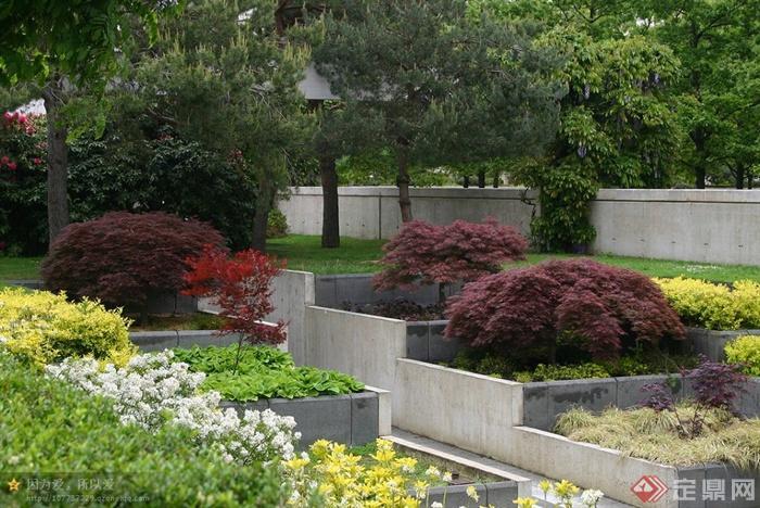 层叠式花池,种植池,景观植物
