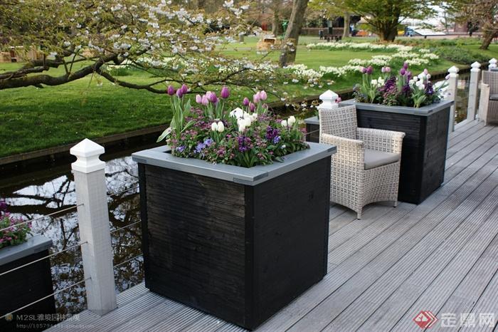 花钵,花卉植物,栏杆