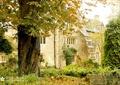 住宅景观,植物墙,乔木,地被植物