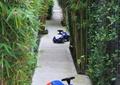 庭院景觀,竹子,園路,地面鋪裝