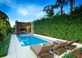 庭院景观,游泳池,花架,躺椅,植物墙,地面铺装