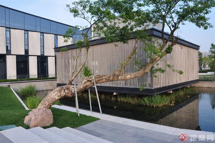 现代某前海万科企业公馆景观设计图-办公环境主景树景