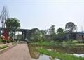 住宅景观,木道路,水体景观,水生植物
