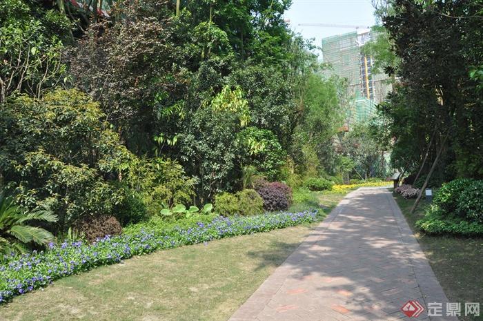 某住宅小区景观设计图-园路景观地面铺装草坪花卉植物