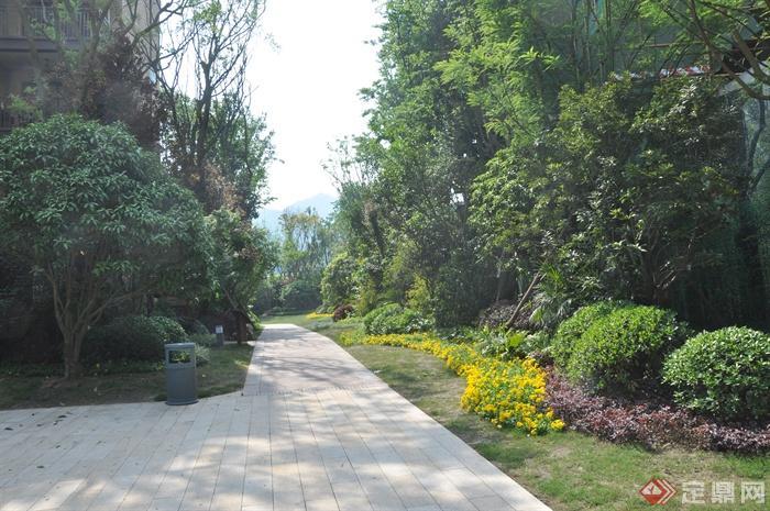 某住宅小区景观设计图-园路地面铺装垃圾桶灌木植物