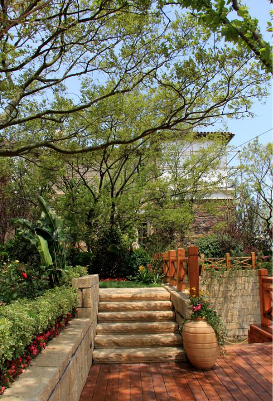 矮墙,景观植物