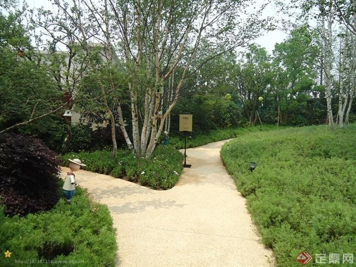 某高层住宅小区景观设计图-园路地面铺装乔木灌木指示