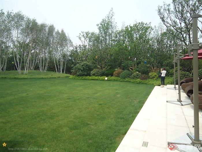 某高层住宅小区景观设计图-草坪地面铺装乔灌木-设计
