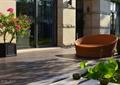 沙发,盆栽,庭院景观
