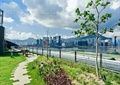 蓝天,汀步,景观植物,草坪