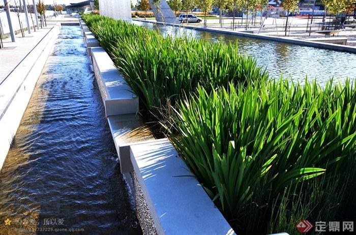 雪邦公共公园景观设计实景图-水池水景台阶水景花池