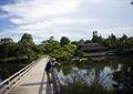 园桥,水榭,水景,亭子