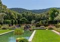 草坪,景观水池,庄园,庭院景观
