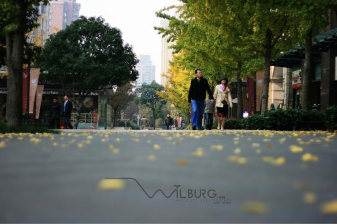 某城市道路景观规划设计图-道路地面铺装行道树-设计
