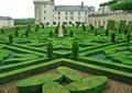 灌木叢,花壇紋樣,植物迷宮