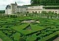 灌木叢,花壇紋樣,庭院景觀,植物迷宮