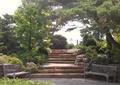 园路,台阶,坐凳,景石,大乔木