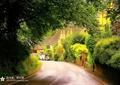 鄉村道路,道路景觀,鄉村景觀,圍墻,花墻