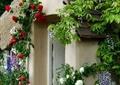 乡村住宅,住宅入口,门亭,花墙,壁灯