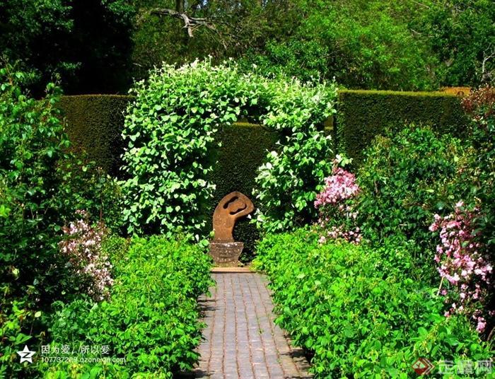 英式花园景观设计图-园路地面铺装灌木植物植物墙花卉