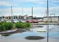 地面鋪裝,草本植物,停車場,汽車,電桿