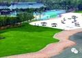 滨水景观,驳岸,铺装,草坪,平台,园路,乔木