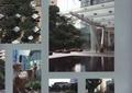 雕塑,遮雨棚,景观植物