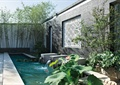 荷花池,景观水池,景墙,围墙,花钵