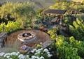 花架,水池,亭子,坐凳