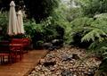 木平臺,木桌椅組合,碎石,蕨類植物