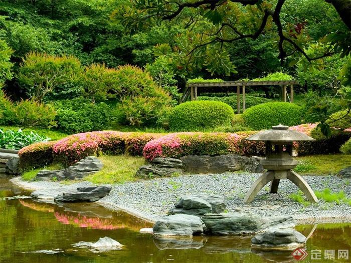 日式风格景观实景图-庭院灯灌木乔木观花植物