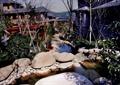 庭院,花园景观,溪流景观,水景,驳岸