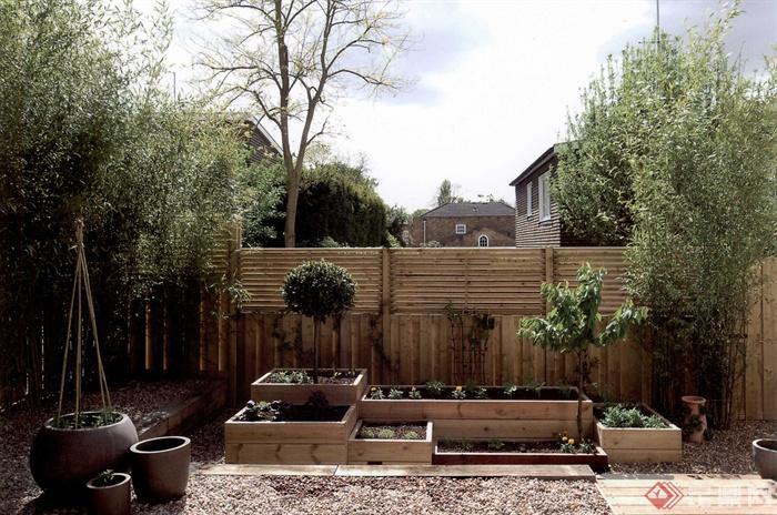 庭院,庭院景观,花园景观