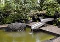 水池,水景,景石,流水景观,水景小品,石子铺装
