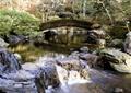 河流水景,景石,拱桥,园桥,流水景观
