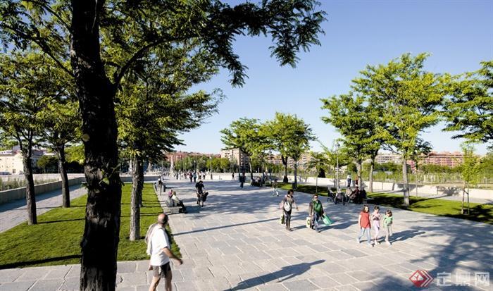 现代风格景观实景-地面铺装石材铺装乔木-设计师图库