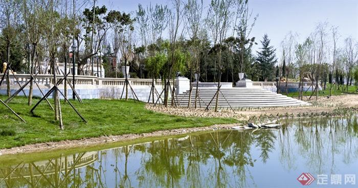 滨水景观,驳岸,草坪,台阶,落叶小乔木