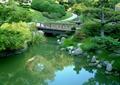 水池,水景,平桥,驳坎,草坪景观