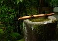 水景小品,小品,水钵