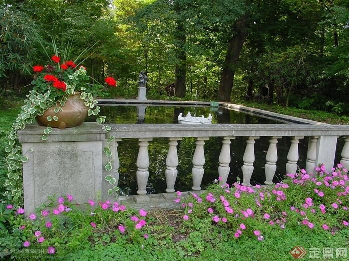 欧式景观实景图片-天竺葵蝴蝶藤六倍利盆栽栏杆景观